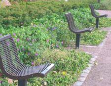 Single occupancy benches - photo by Ville Tikkanen