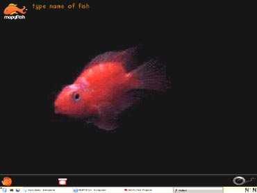 HP's MOPy Fish screensaver - an example of 'persuasive technology'